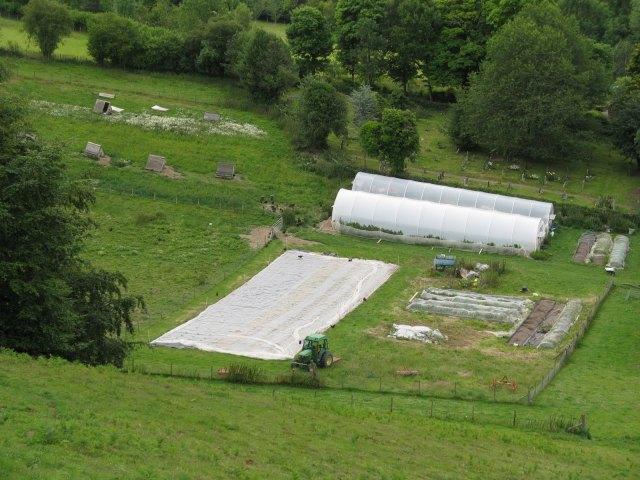 Hopesay Glebe Farm organic smallholding